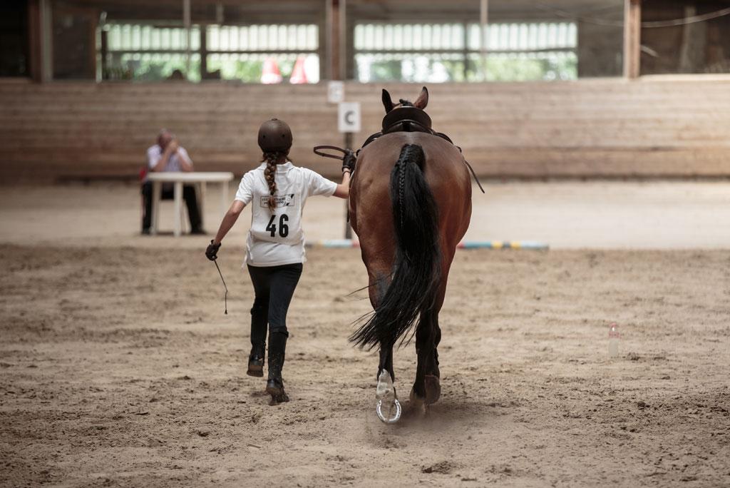 Manège du Chalet-à-Gobet, Lausanne: Notre école d'équitation.